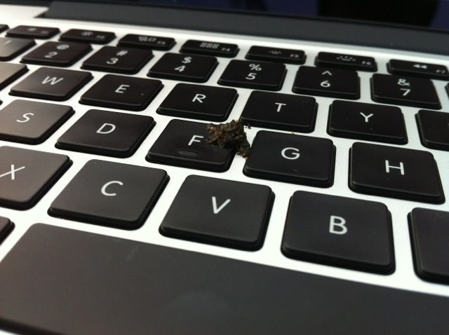 Dove shit on my laptop